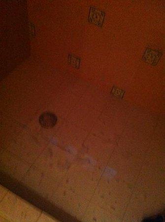 Hotel Plaza Santo Domingo: doccia allagata