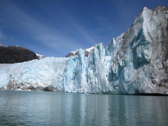 Terra Luna: Glaciar leones