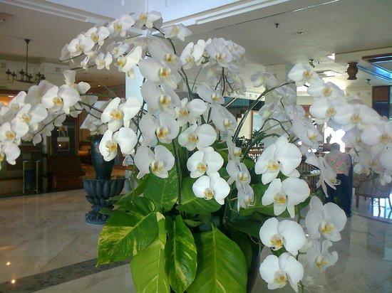 Hotel Sahid Jaya Lippo Cikarang: ロビー