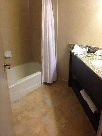 Embassy Suites by Hilton Birmingham: bathroom