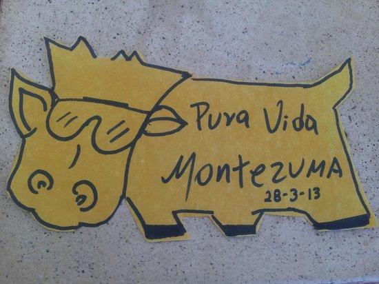Vaca Loca Restaurante: es una buena iniciativa para ayudar.