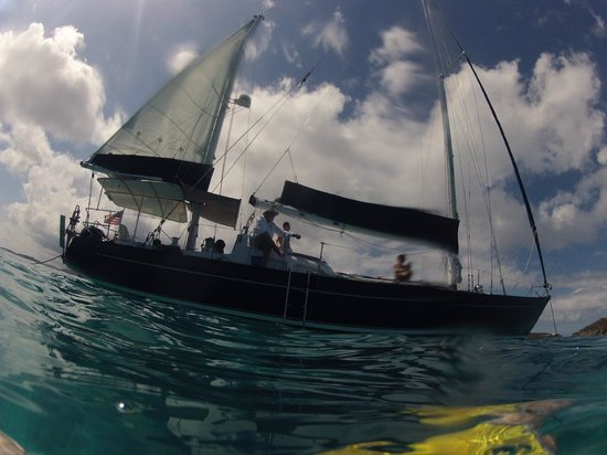 Alaunt Charters day sails: The beautiful Alaunt