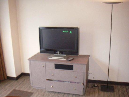 Hotel & Resort Sunshine Sazan Seto: TV
