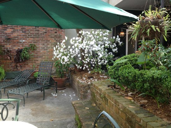 Place d'Armes Hotel : Beautiful white flower tree accenting the courtyard.