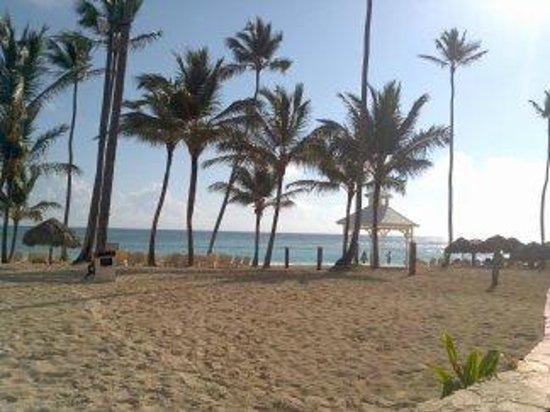 Majestic Colonial Punta Cana: Beach