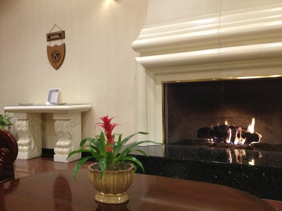 DoubleTree by Hilton Hotel Flagstaff: Lobby fireplace