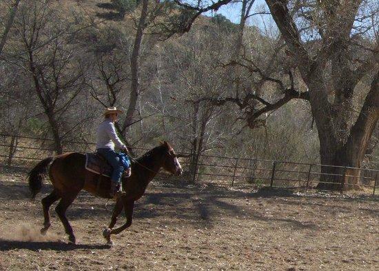Circle Z Ranch: Loping home!