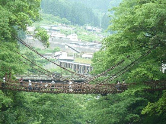 Iya Kazura Bridge: かずら橋全貌。遠くから見るとこんな感じ。