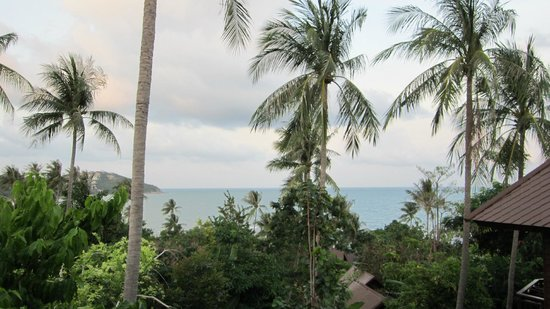 Nora Beach Resort and Spa: View from room