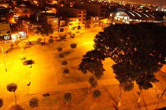 Elixer Hotel: Vista de áreas verdes