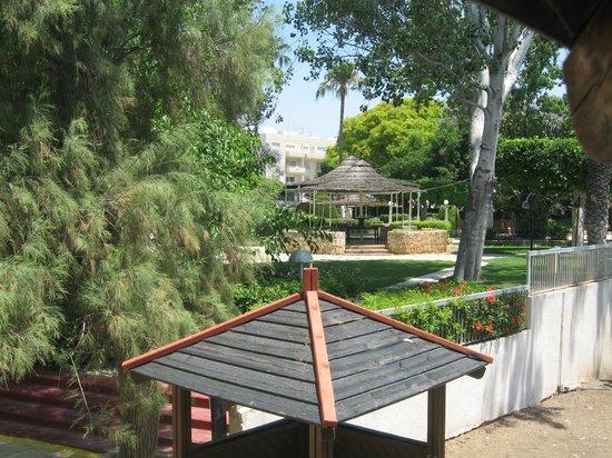 Poseidonia Beach Hotel: внутренний садик