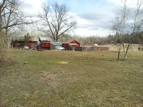 Country and Farm B&B: farm and alternate accommodations