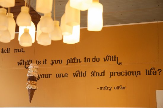 Arcata Scoop: A favorite quote and locally made (Wes of Mirador Glass) Straus bottle light fixture