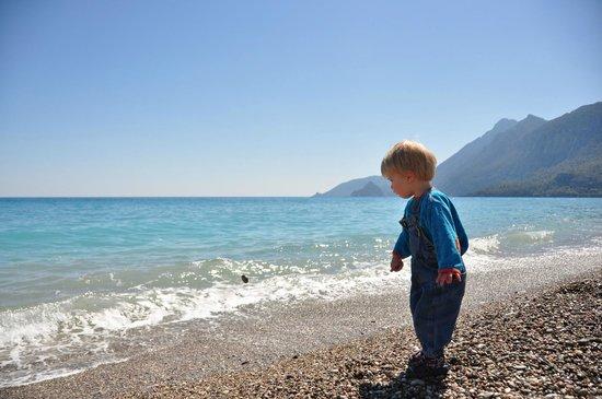 Akdeniz Bahcesi: Cirali beach just a couple of minutes away