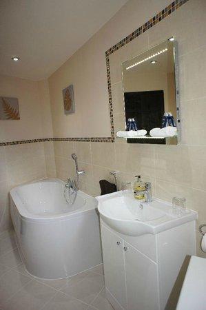 Bathroom next to 'Cadboll' room