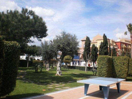 Iberostar Malaga Playa: CESPED