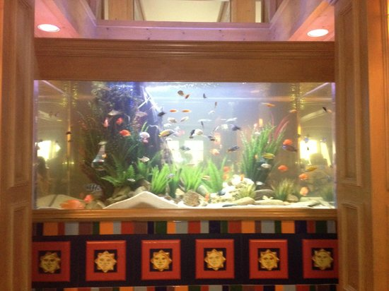 Homewood Suites by Hilton Fort Myers: Fish tank in lobby
