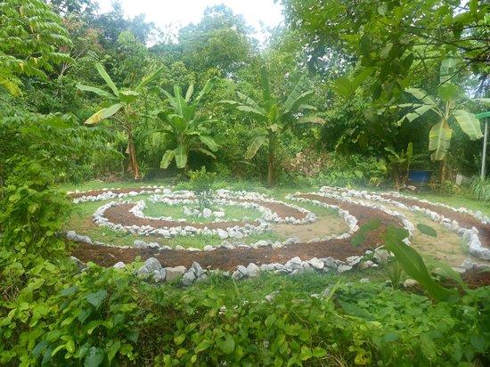 The Kebun: One of the gardens