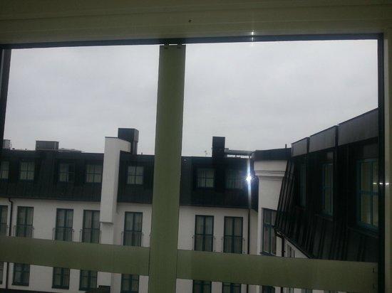 Renaissance Malmo Hotel: spider on the window
