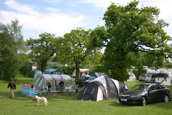 Woodhouse Farm Caravan and Camping Park: Camping in the sun