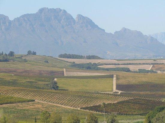 Simonsberg over Wine Farms at Paarl