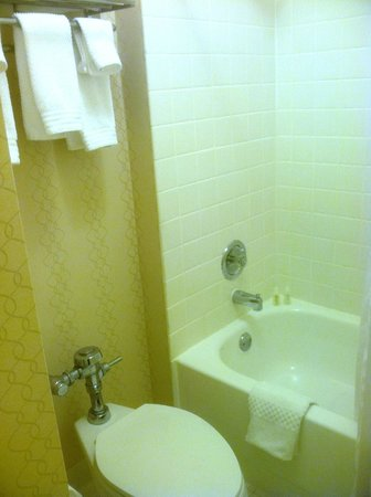 Renaissance Cleveland Hotel: Toilet and sink