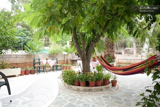 Veggie Garden Athens B&B: Relaxing in the garden