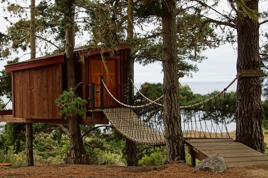 Treebones Resort : The treehouse, complete with suspended walkway.