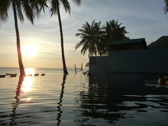 The Coast Resort - Koh Phangan: Piscine