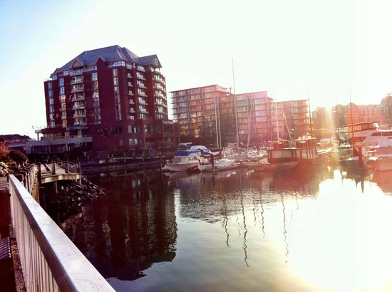 Coast Victoria Harbourside Hotel & Marina: Great location and view