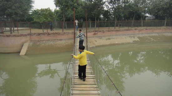 Jhajjar, India: Burma Bridge at Pratap Garh Farms