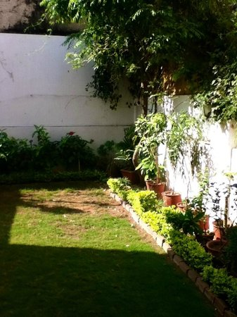 All Seasons Homestay Jaipur: Beautiful back lawn and garden