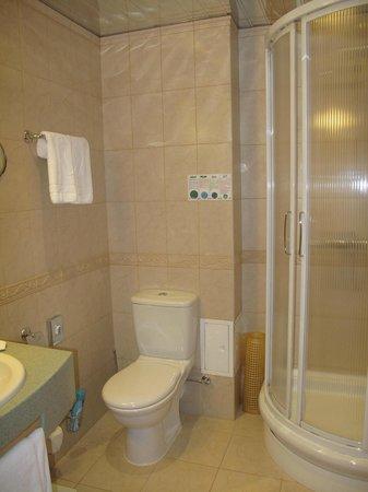Assambleya Nikitskaya: Bathroom
