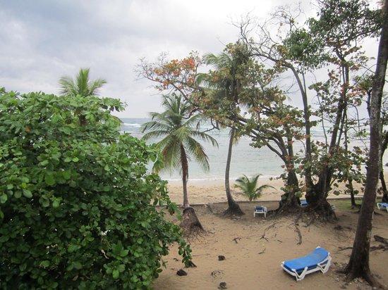 Grand Paradise Playa Dorada: vu de la chambre 1633