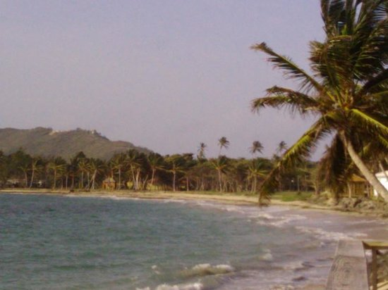Coconut Bay Beach Resort & Spa: look at the coast! The palm trees!