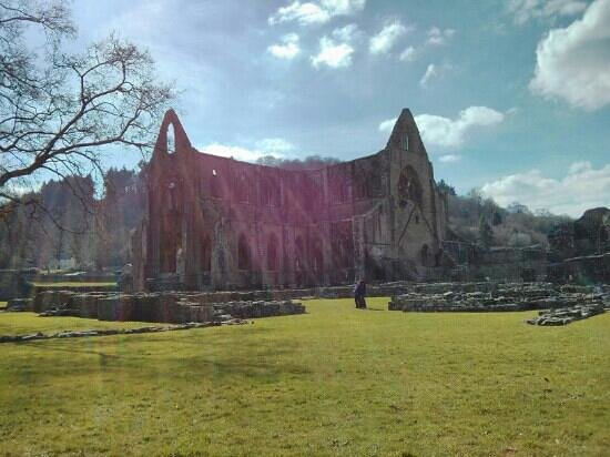 South Wales Personal Day Tours: Tintirn Abbey