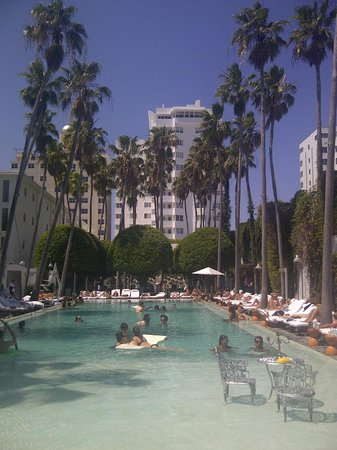 Delano South Beach Hotel: Famous Delano Pool