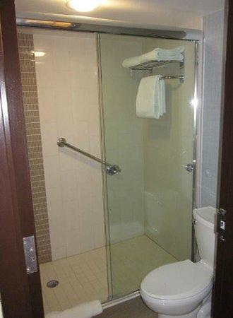 Hyatt Place El Paso Airport: Shower