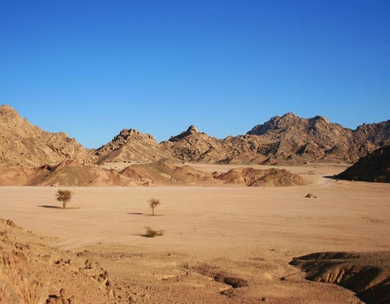 South Sinai Photo