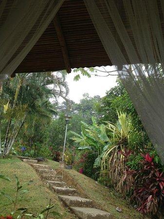 Villas Rio Mar: View from outdoor patio