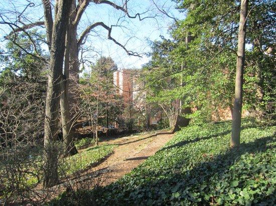 Tudor Place grounds