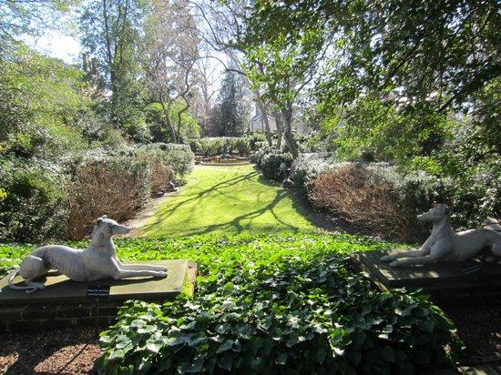 A little garden grove on the Tudor Place grounds