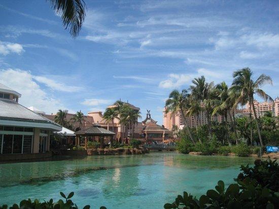 Atlantis, Beach Tower, Autograph Collection: The pool area near The Beach Tower