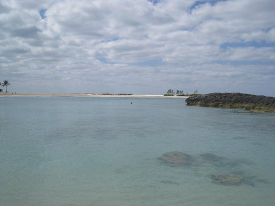 Atlantis, Beach Tower, Autograph Collection: The view from the beach near The Cove...