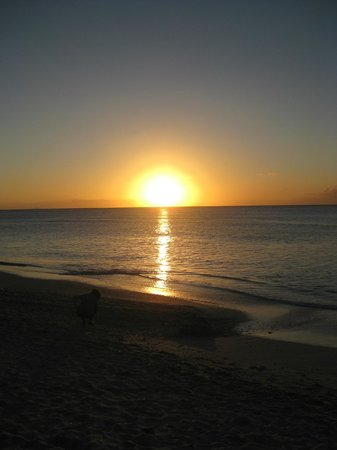 Cocobay Resort: sunset from the beach