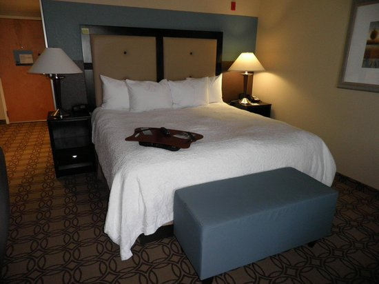 Hampton Inn and Suites Charlotte Airport: Comfortable King bed