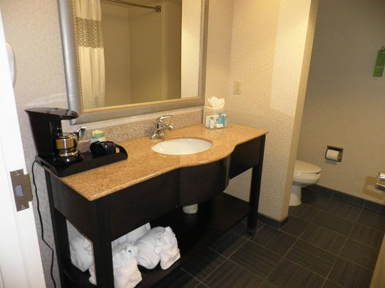 Hampton Inn and Suites Charlotte Airport: Spacious bathroom