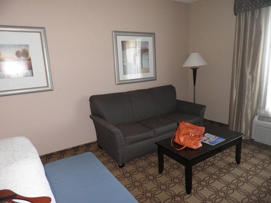 Hampton Inn and Suites Charlotte Airport : Spacious King suite