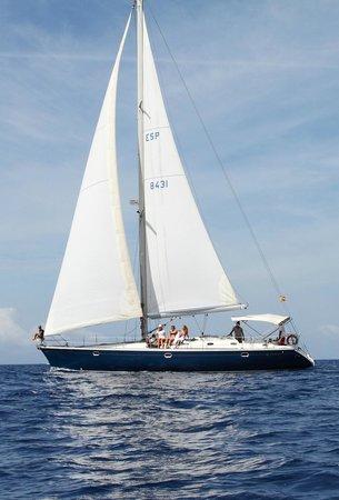 Blue Jack Sail: Enjoy the life