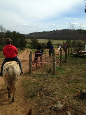 Chattahoochee Stables: Beautiful trail ride